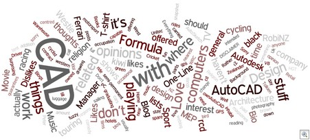 Wordle_about_robinz