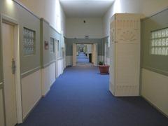 Taipa Corridor