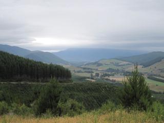 BIMS RD Valley