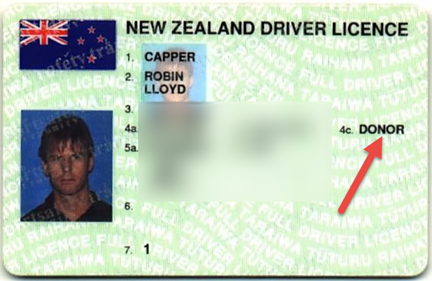 Old_Drivers_License