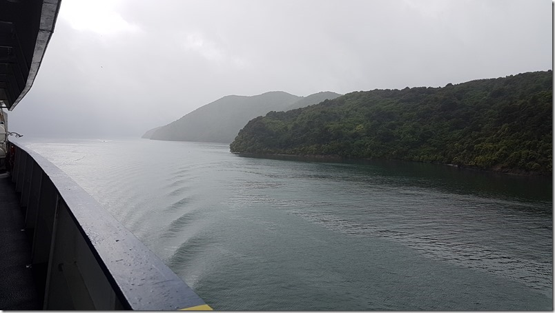Tory Channel in the Marlborough Sounds on the Bluebridge Ferry