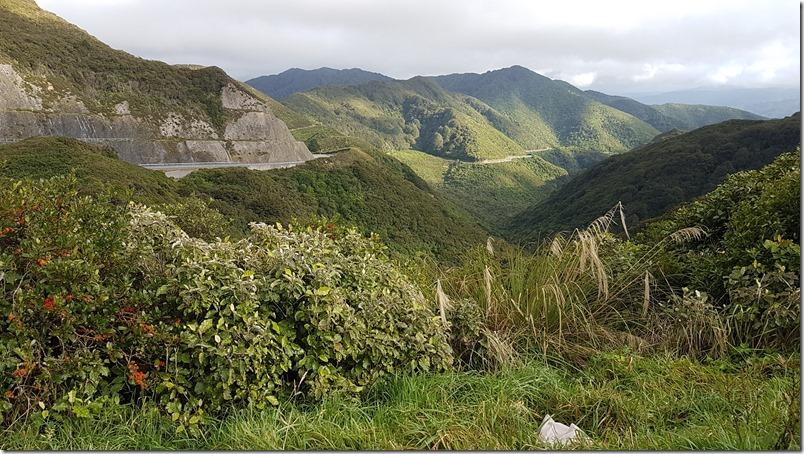 Rimutaka Hill