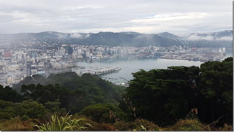 Wellington from Mt Victoria