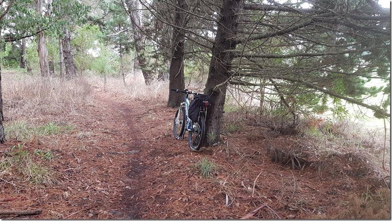 Kaikōura Cycle Trails