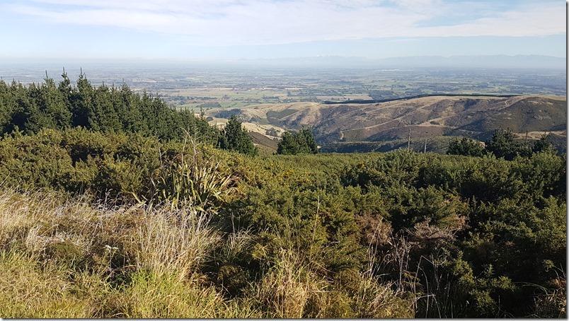 Port Hills View