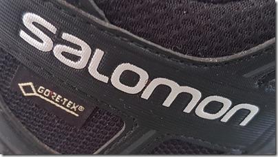 Salomon Trail Running Shoe XA PRO 3D GTX GORE-TEX