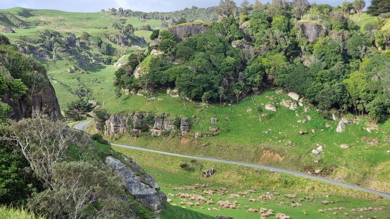 Waikawau Stream Valley, Limestone Downs, about 8km South of Port Waikato