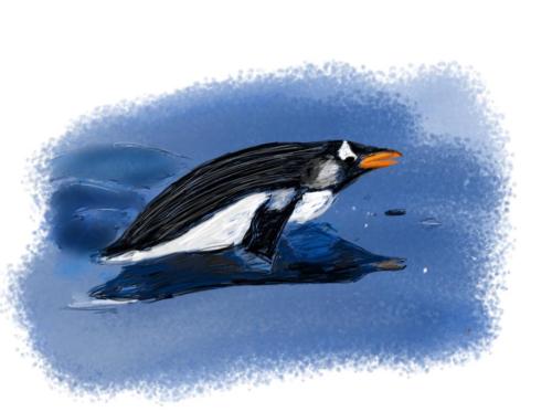 Penguin Sketch Day 2021 (Final)